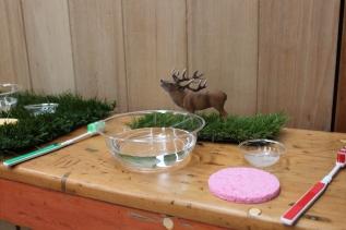 Reindeer Washing