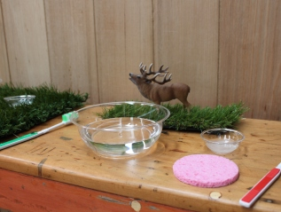 Reindeer Washing
